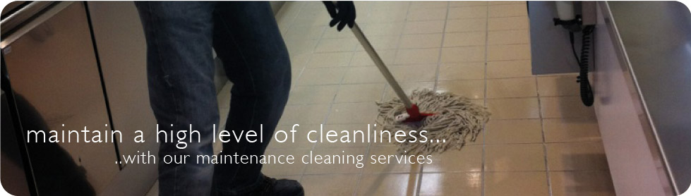 Maintenance Cleaning